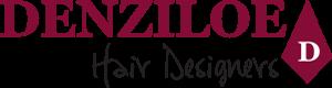 denziloe logo